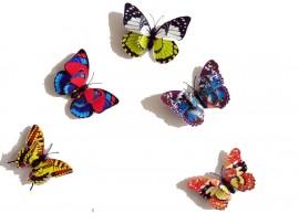 3D бабочки на магнитах на свадьбу или вечеринку (12шт)